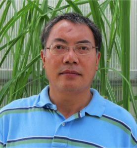 Photo of Xiaoguo